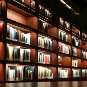Čehu grāmatas latvju mēlē, intriga no Itālijas un «Kalpones stāsts» lasītāju vērtējumā